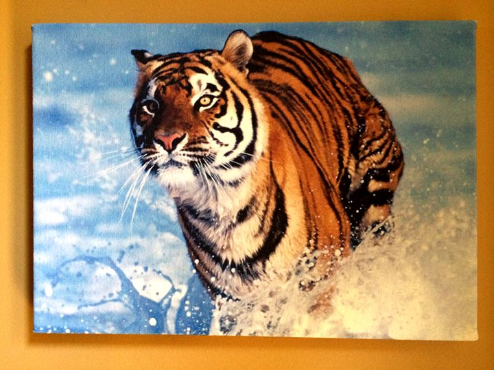 Tiger at the Beach - Chameleon Canvas Art