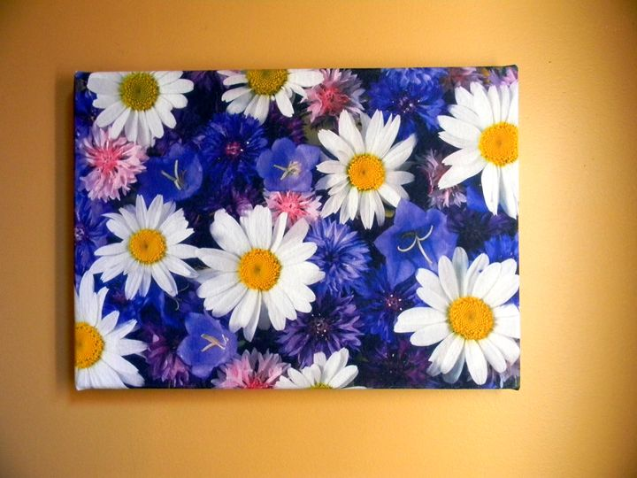 Daises and Purple Flowers - Chameleon Canvas Art
