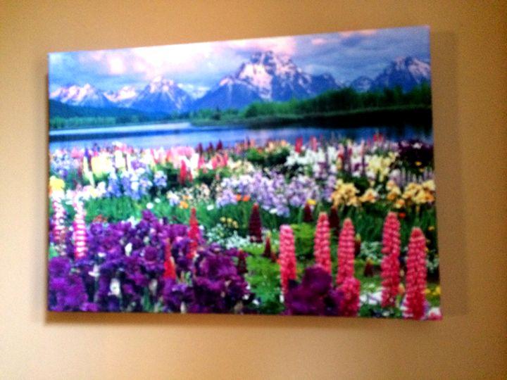 Flower Field/Landscape - Chameleon Canvas Art