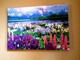 "14""x10"" Canvas Giclee Art prints"
