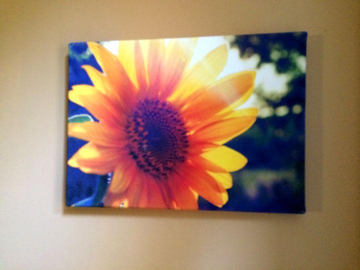 Sunflower - Chameleon Canvas Art