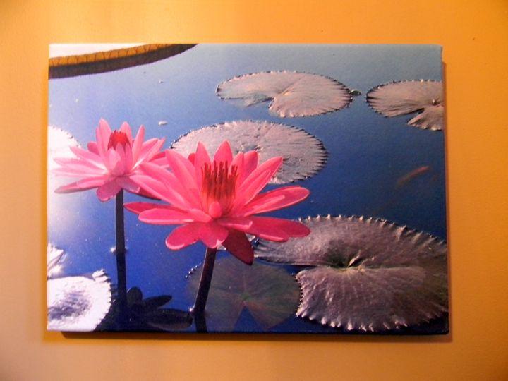 Water Lilies - Chameleon Canvas Art