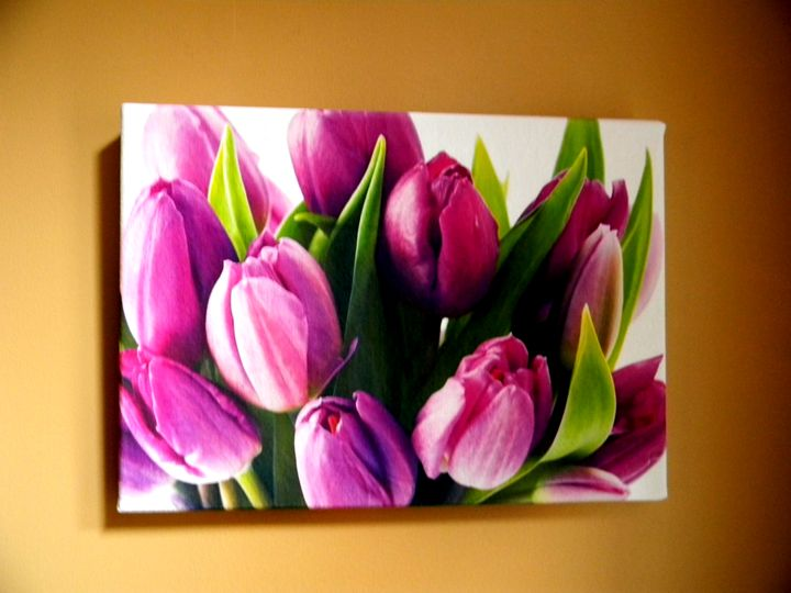 Tulips - Chameleon Canvas Art
