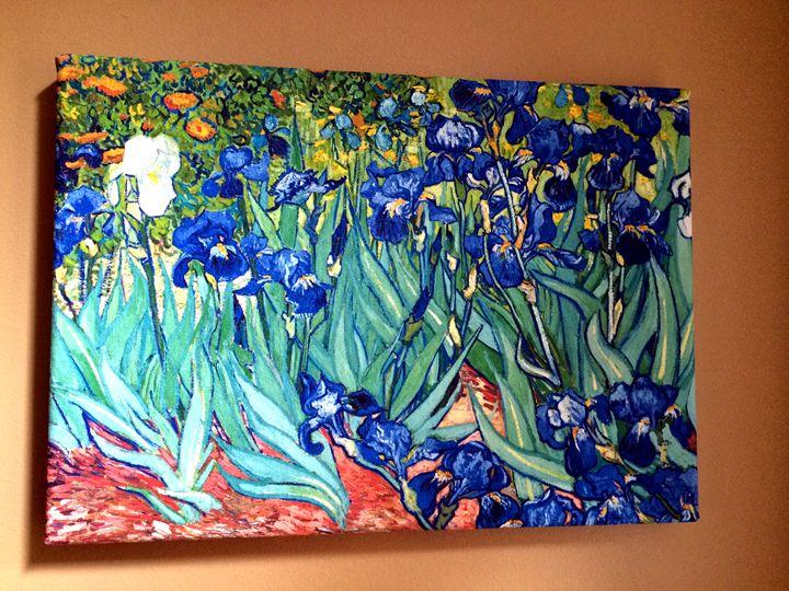 Irises By Van Gogh Chameleon Canvas Art Paintings Prints
