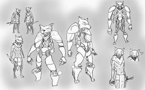 Original Concept Sheet for PhiWolves