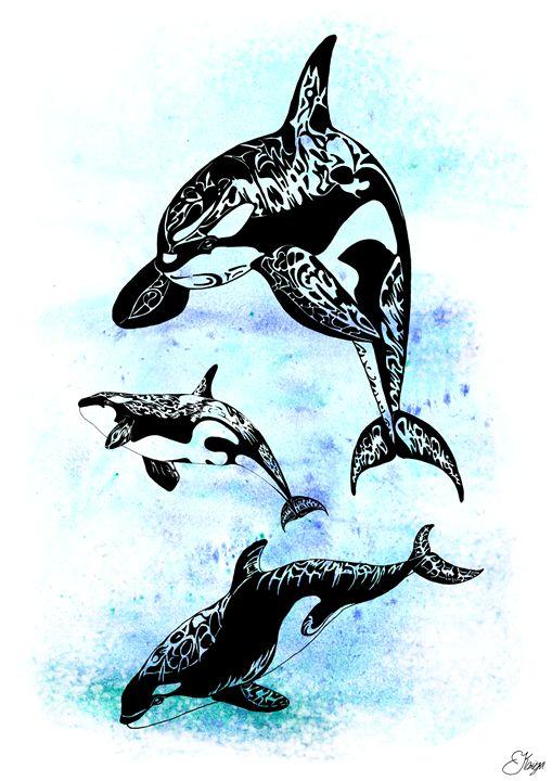 Orcas - KRIYA OCEANS