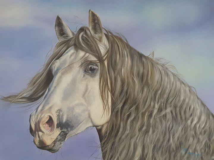 White horse - Angel Lovera