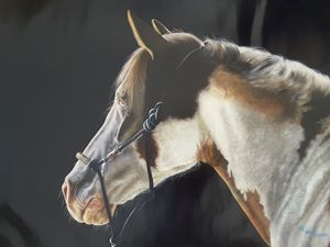 Horse Brown and White