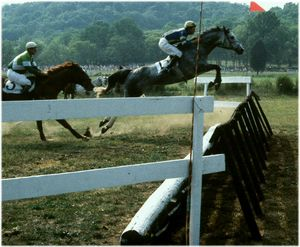 The First Jump, Steeplechase - Manodak's