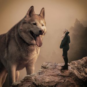 Dog and woman nature