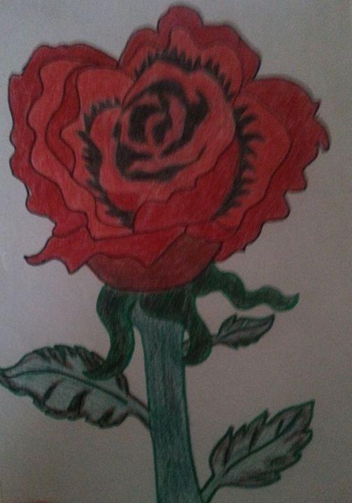 Red rose - ShadowAngel