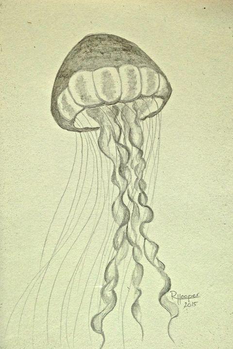 Jellyfish - Robyn Hooper
