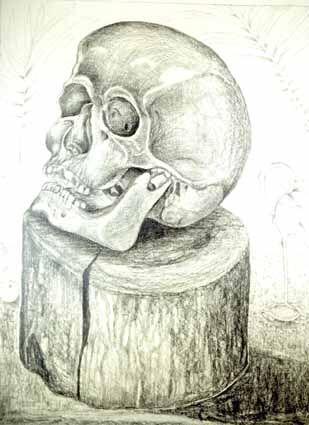 Cranium of a Death on a Wooden Block - Heinz Sterzenbach