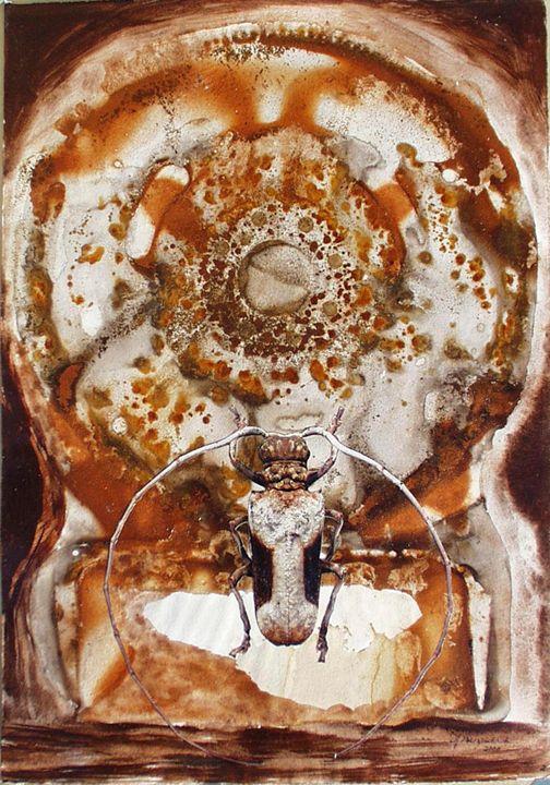 VU 2 Longhorn Beetle - Heinz Sterzenbach
