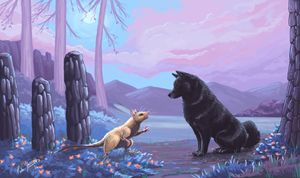 Schipperke in the Purple Forest