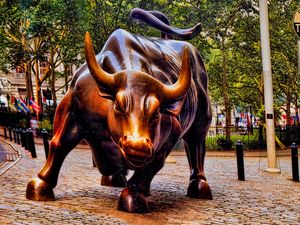 Wall Street Bull - Interface Images World Fine Art Gallery
