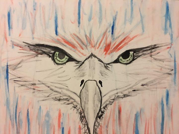 American eagle - Cassandra