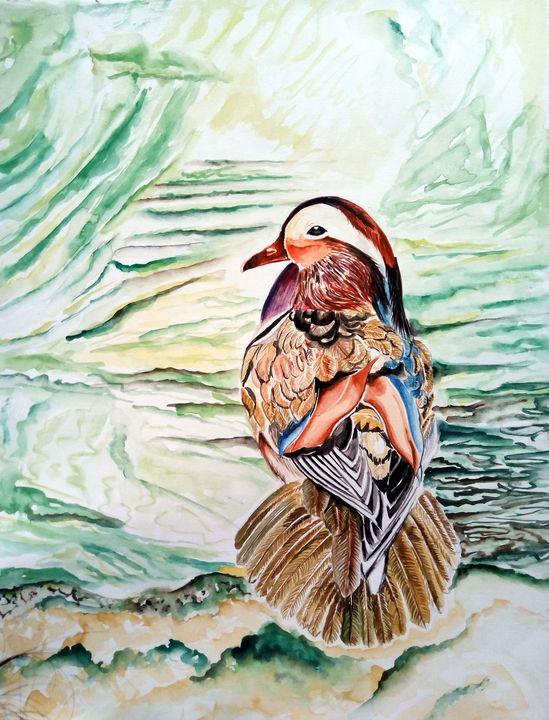 The Mandarin duck - Ehsaas