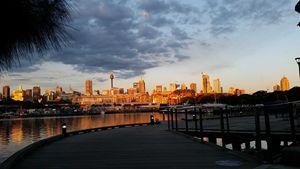 Still Sydney Evening