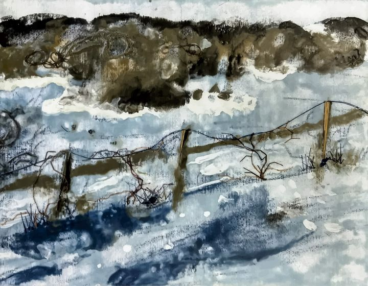 Grapevines in the Snow - SJD: