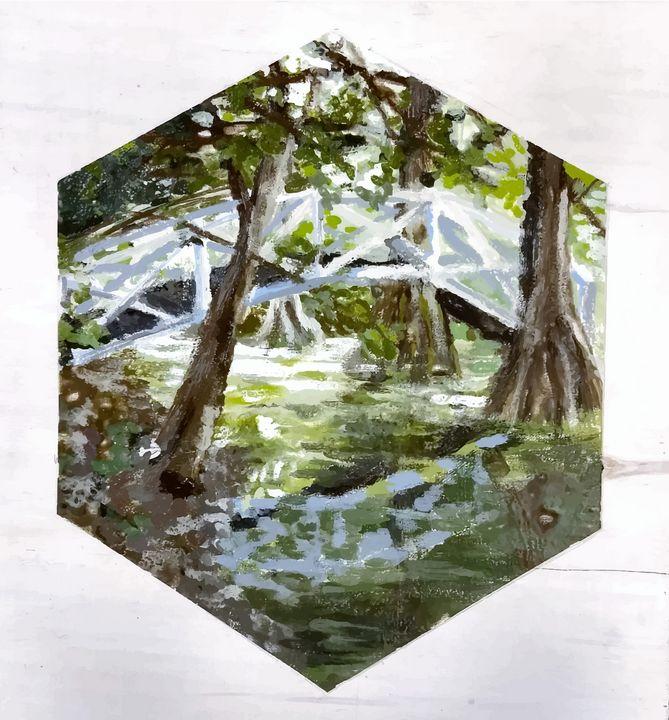 South Carolina Swamp - SJD: