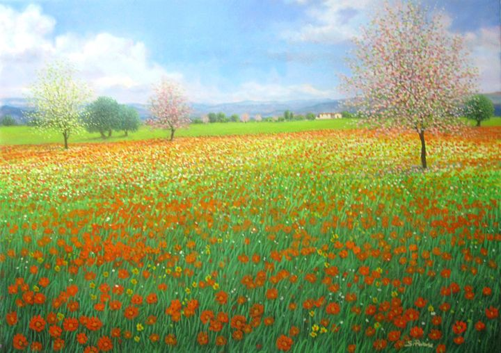 Field of flowers - Sandro Parise