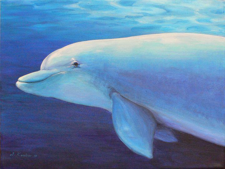 Dolphin Power Animal Spirit Guide - Sabine Koschier