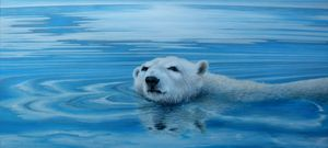 Icebear in melting water