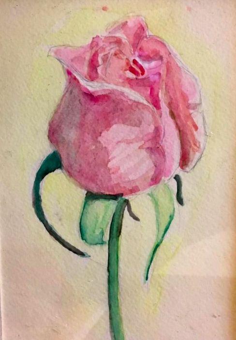 rose - Kelvin Arias Studio
