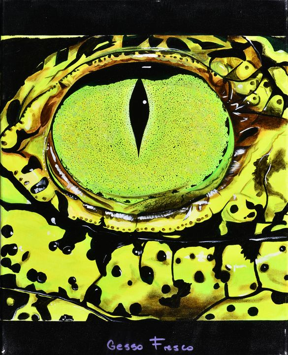 Alligator Eye - Gesso Fresco
