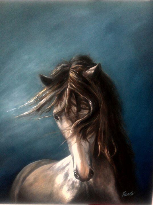 Solitaire - Ianto's Gallery
