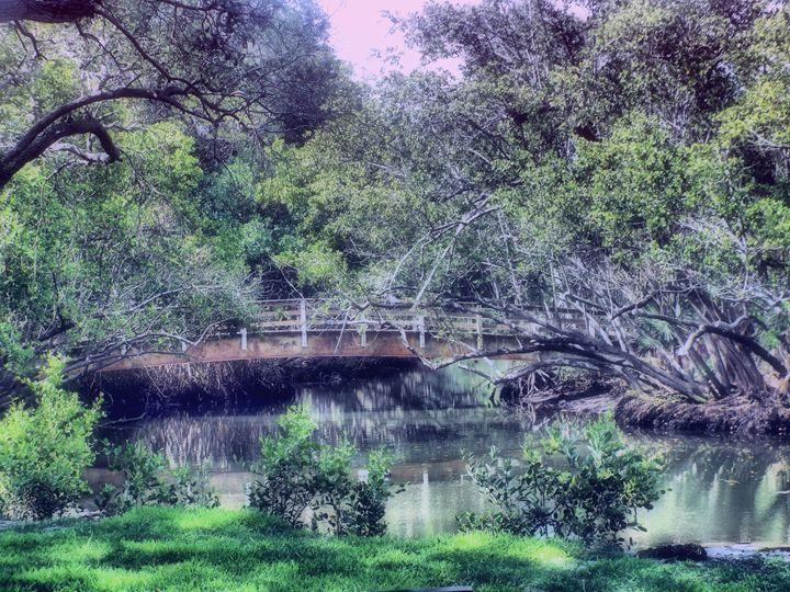 Enchanted Forest Park - Black Nature