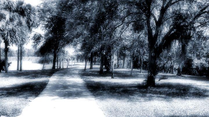 Delevoe Park 1 - Black Nature