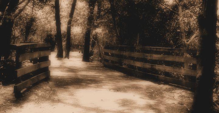 Greynold's Park - Black Nature