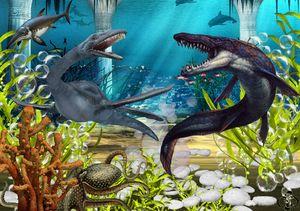 Undersea Battle - Selby