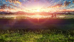 walk in sunset