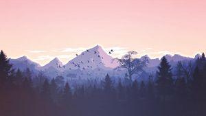 Mountain and birds