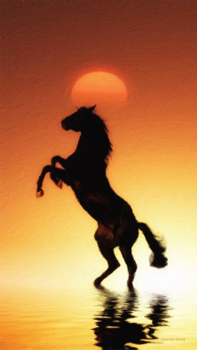 Horse and Sunset - GabriellasArt by Gabriella Weninger-David