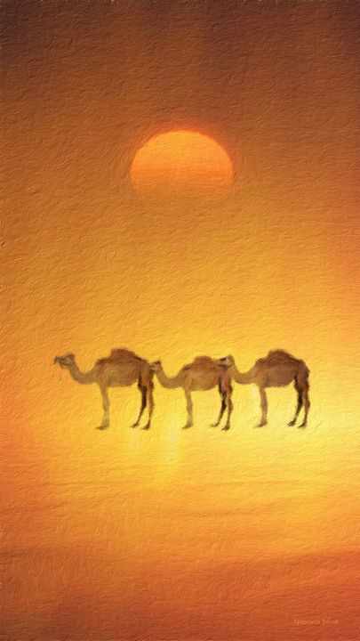 Desert, Camels and Sunset - GabriellasArt by Gabriella Weninger-David
