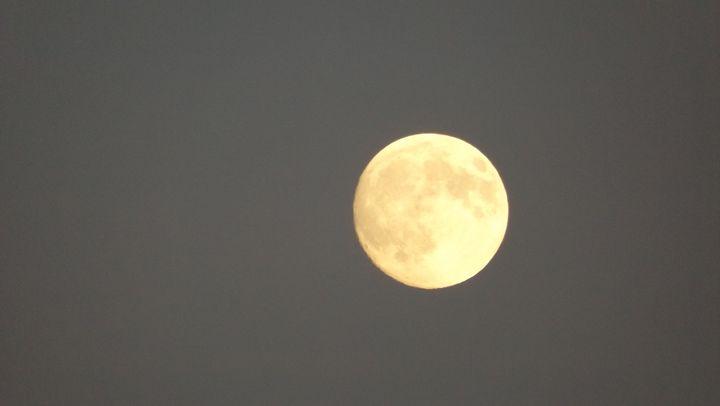 Simple Moon - Natalia Anthony