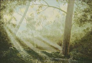Morning Mist Among the Gums