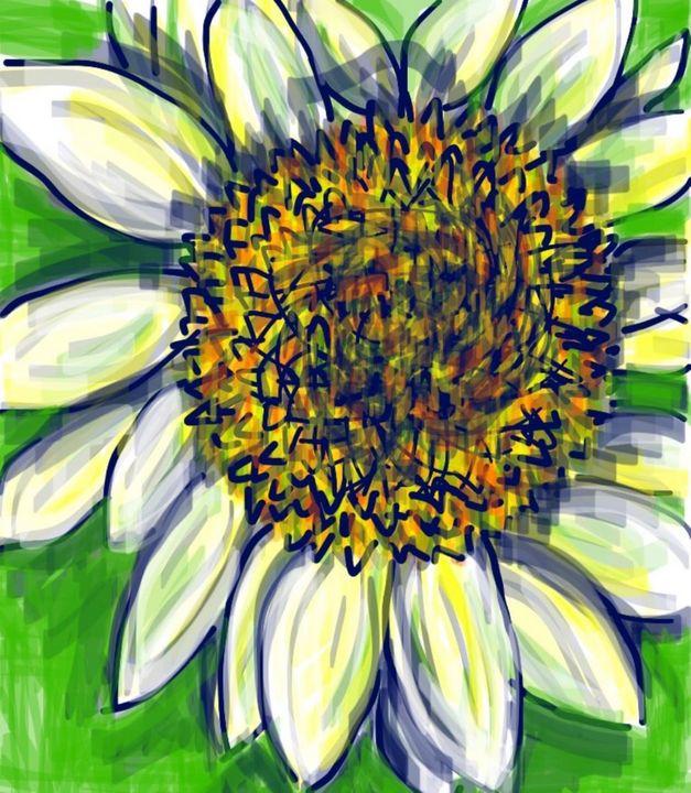 Sunflower - Susan Hess