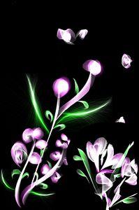 Purple  breeze