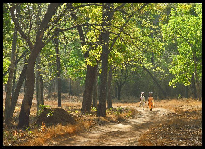 VILLAGE LIFE - Vaibhav View