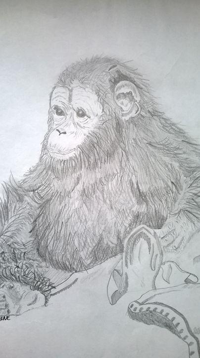 Babba chimp - Collierz
