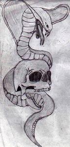 A Skull's Snake