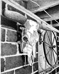 Steer Skull on Brick Wall