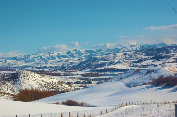 Snow Landscape - Photography by Shellee