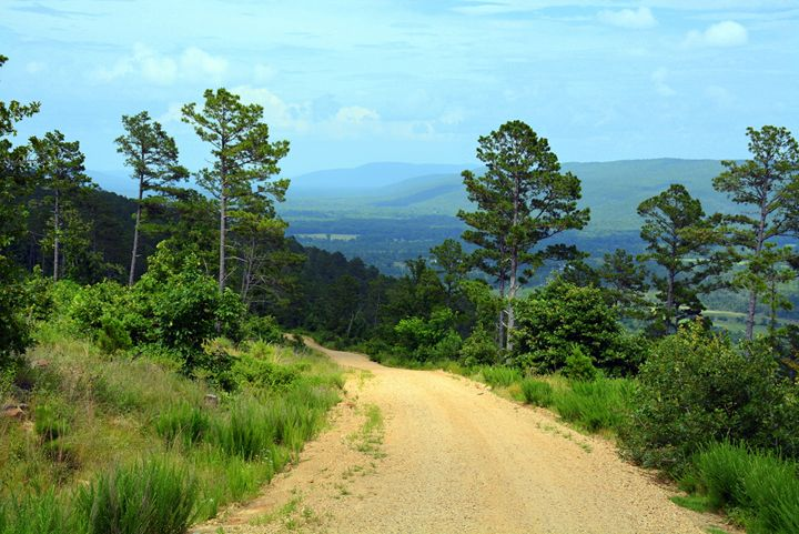 Dirt Road Off The Mountain - Desimay's Fine Art