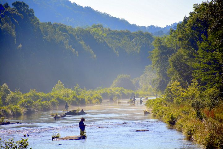 Trout Anglers on the river - Desimay's Fine Art
